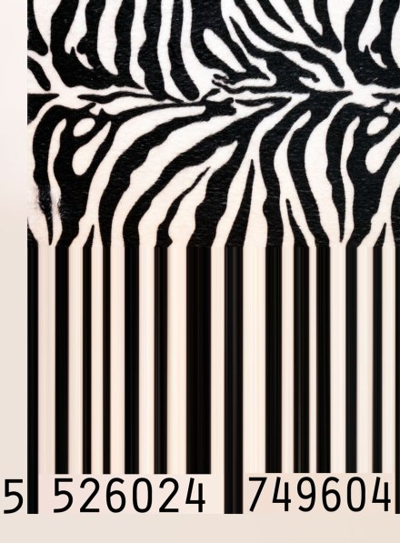 Zebra barcoded
